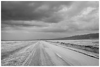 Road. Carrizo Plain National Monument, California, USA ( black and white)
