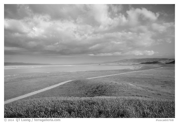 Road and Soda Lake. Carrizo Plain National Monument, California, USA (black and white)