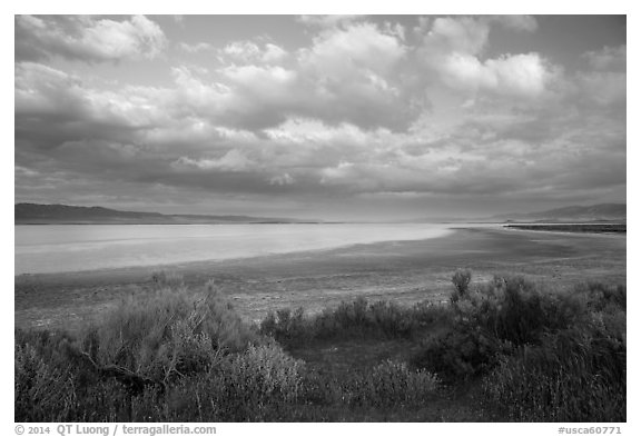 Soda Lake, late afternoon. Carrizo Plain National Monument, California, USA (black and white)