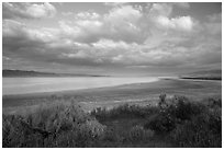 Soda Lake, late afternoon. Carrizo Plain National Monument, California, USA ( black and white)