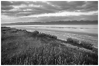 Soda Lake with reflections of Temblor Range. Carrizo Plain National Monument, California, USA ( black and white)