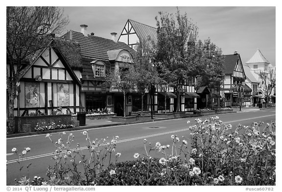 Street and flowers. Solvang, California, USA (black and white)