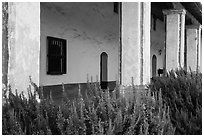 Flowers and gallery, La Purísima Mission. Lompoc, California, USA ( black and white)