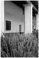 Flowers and gallery, Mission La Purísima. Lompoc, California, USA ( black and white)