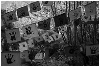 Flags in garden. Big Sur, California, USA ( black and white)