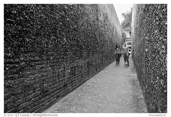 Alley lined with chewed gum left by passers-by. California, USA (black and white)