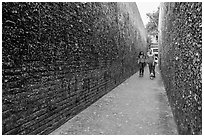 Alley lined with chewed gum left by passers-by. California, USA ( black and white)