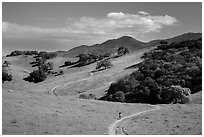 Trail winding on verdant hills, Pacheco State Park. California, USA ( black and white)