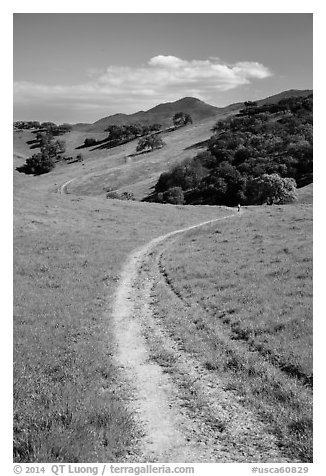 Trail and luch hills, Pacheco State Park. California, USA (black and white)