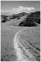 Trail and luch hills, Pacheco State Park. California, USA ( black and white)