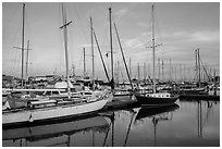 Yachts, Moss Landing. California, USA ( black and white)