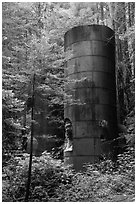 Lime kilns, Limekiln State Park. Big Sur, California, USA ( black and white)