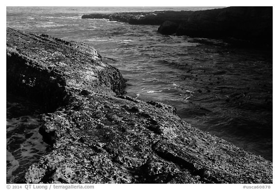 Rock and ocean, Spooners Cove, Montana de Oro State Park. Morro Bay, USA (black and white)