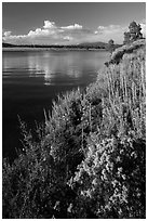 Prosser Reservoir, Tahoe National Forest. California, USA ( black and white)