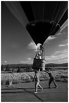 Helpers pull hot air balloon, Tahoe National Forest. California, USA ( black and white)