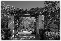 Garden framing hills, Cesar Chavez National Monument, Keene. California, USA ( black and white)