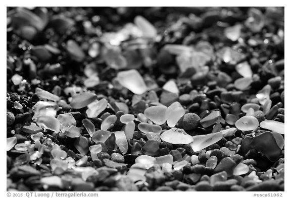 Seaglass detail. Fort Bragg, California, USA (black and white)