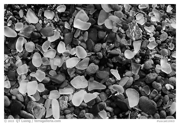 Seaglass close-up. Fort Bragg, California, USA (black and white)