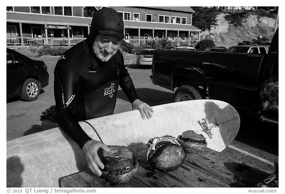 Man with surfboard examining abalone. California, USA (black and white)