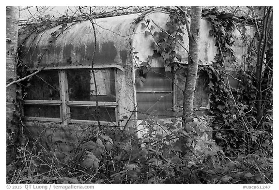 Overgrown trailer, Klamath. California, USA (black and white)