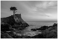 Lone Cypress and cove at sunset. Pebble Beach, California, USA ( black and white)