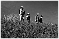 Family strolling in a field of lupines. Antelope Valley, California, USA ( black and white)