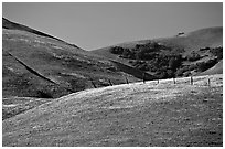 Gorman Hills in the spring. California, USA ( black and white)