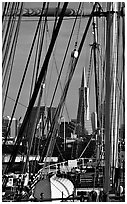 Transamerica Pyramid  seen through the masts of the Balclutha. San Francisco, California, USA ( black and white)
