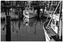 Fishing boats  anchored in  Fisherman's Wharf. San Francisco, California, USA ( black and white)