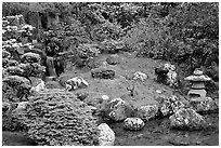 Cascade, rocks, and grass, Japanese Garden, Golden Gate Park. San Francisco, California, USA (black and white)