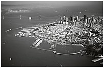 Aerial view of Downtown and Fisherman's wharf. San Francisco, California, USA (black and white)