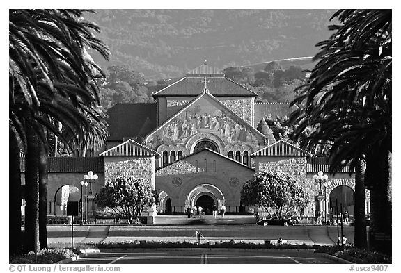 Quad from Palm Drive, late afternoon. Stanford University, California, USA (black and white)
