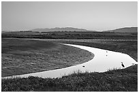 Wetlands at dusk, Palo Alto Baylands Preserve. Palo Alto,  California, USA (black and white)