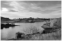 Reservoir, Joseph Grant County Park. San Jose, California, USA (black and white)