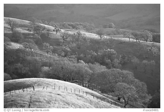 Hills, Joseph Grant County Park. San Jose, California, USA (black and white)