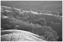 Hills, Joseph Grant County Park. San Jose, California, USA ( black and white)