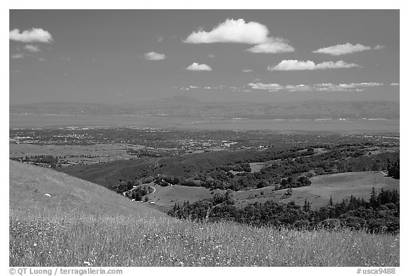 Meadows in the spring, with the Silicon Valley in the distance,  Russian Ridge Open Space Preserve. Palo Alto,  California, USA (black and white)