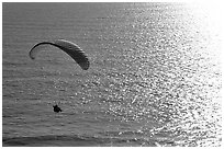 Paraglider above the ocean, the Dumps, Pacifica. San Mateo County, California, USA (black and white)