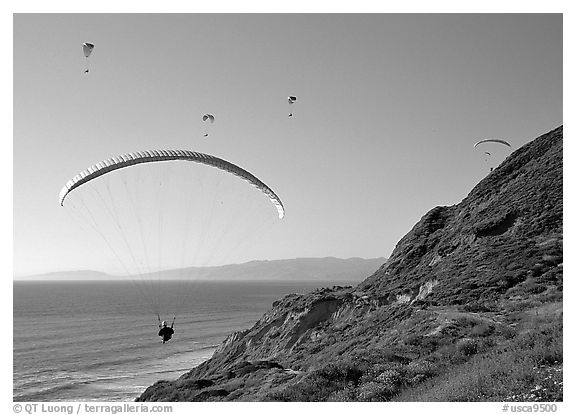 Paragliders soaring above cliffs, the Dumps, Pacifica. San Mateo County, California, USA (black and white)