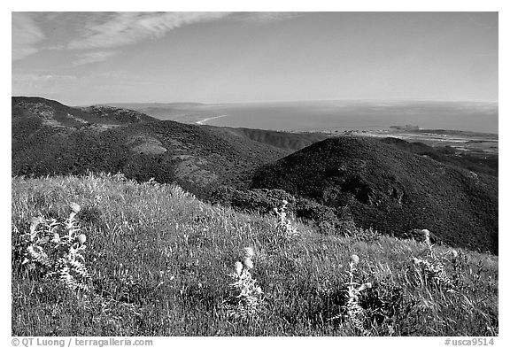 Montara Mountain and Pacific coast. San Mateo County, California, USA (black and white)