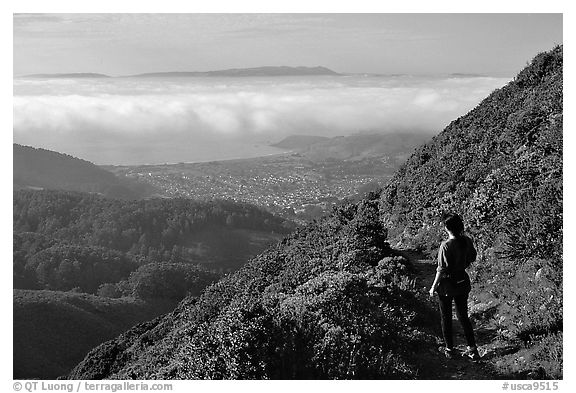 Hiker on Montara Mountain. San Mateo County, California, USA