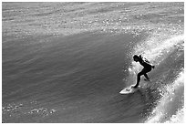 Surfer, morning. Santa Cruz, California, USA (black and white)