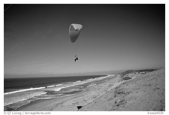 Paragliders soaring above Marina sand dunes. California, USA (black and white)