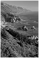 Costline from Partington Point, Julia Pfeiffer Burns State Park, late afternoon. Big Sur, California, USA ( black and white)