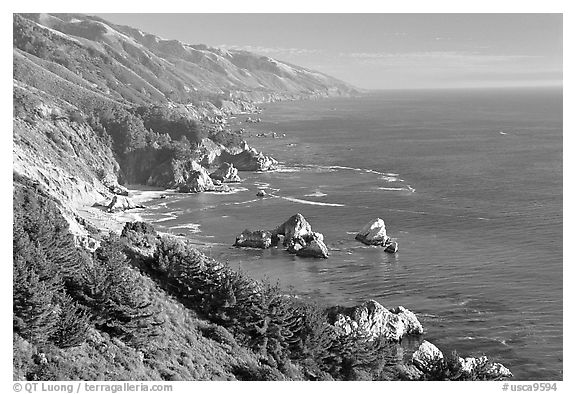 Costline from Partington Point, Julia Pfeiffer Burns State Park, late afternoon. Big Sur, California, USA (black and white)
