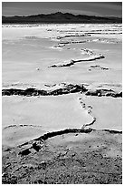Salt formations,  Mojave desert. California, USA (black and white)