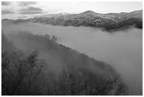 Fog and ridges, sunrise, Stanislaus  National Forest. California, USA (black and white)