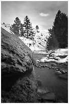 Buckeye Hot Springs. California, USA ( black and white)