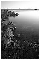 Tufas at sunrise. Mono Lake, California, USA (black and white)