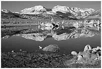 Tufas and Sierra, winter sunrise. Mono Lake, California, USA (black and white)